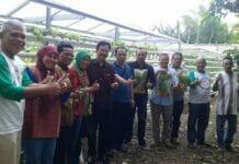 Kemenkop Dorong Bisnis Hidroponik KUKM Masuki Pasar Modern