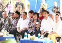 Presiden Serahkan Hutan Tanaman Rakyat kepada 7 Koperasi