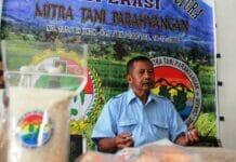 Tingkatkan Produksi Jagung, Koperasi Tani Penuhi Pakan Ternak