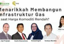 Menarikkah Membangun Infrastruktur Gas saat Harga Komoditi Rendah?